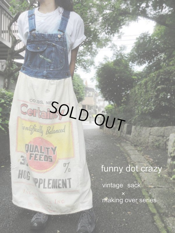 "画像1: ""funny dot CRAZY"" 〜Vintage Denim ×KEY×サックドレス〜"